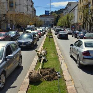 """Нов хортикултурен лик на булеварот """"Ленинова"""""""