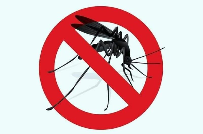 Ќе се врши прво прскање против возрасни комарци